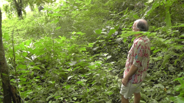 My husband is looking ahead at the path into a very green forest as we make our way to the river.