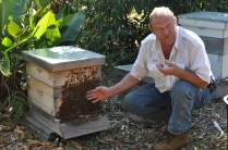 "Earl, my friend who collects swarms. ""Look, I'm so comfortable around bees that i can put my bare hand right on the front of the hive…. OWW!"""