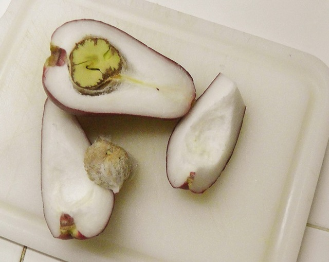 This is the fruit cut open. The flesh is very light and delicate, soft but not mushy, white, mildly sweet but without a distinctive flavor or much juice. The skin is soft and smooth, and the nut inside is very pretty (but I didn't try to eat that part)