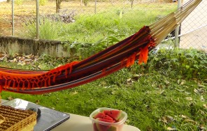 Hammock time! with more watermelon and my computer (I learned that it's easier to deal with a book than a computer in a hammock)