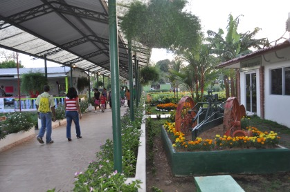The plants area had beautiful flowers and vegetables in lovely beds.