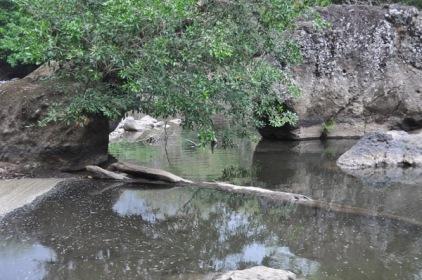 river2_28c
