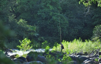 A man is making his way up the river with a very long bamboo fishing pole.