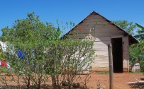 A wood house
