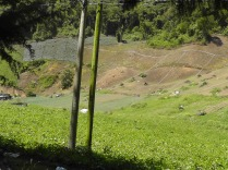 Fields with irrigation pipes.