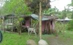Little Panamanian house