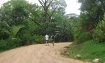 It is a fair walk from the boat dock to the beach through gorgeous forest with amazing heliconias and other plants