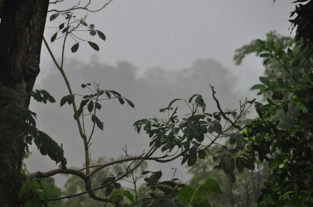 Raining in Panama