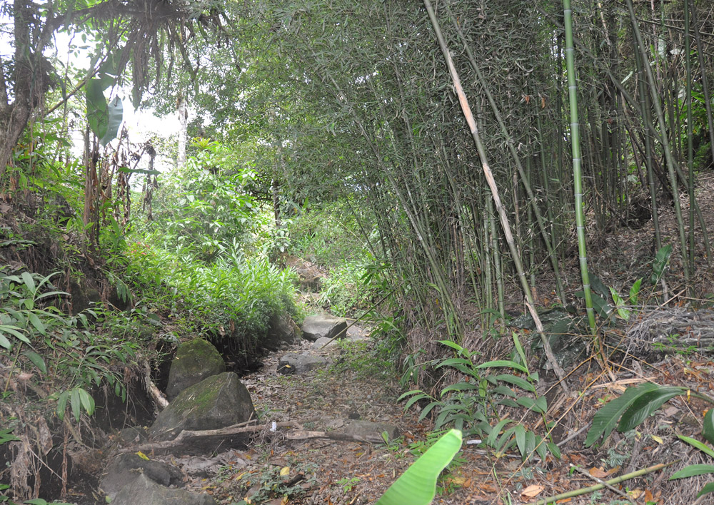 Volcan Sitio Barriles The Barrels Archaeological Site