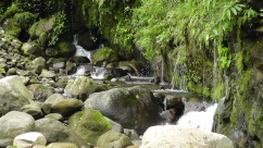 Beside the rocky area is another stream that becomes the waterfall where we were sitting.