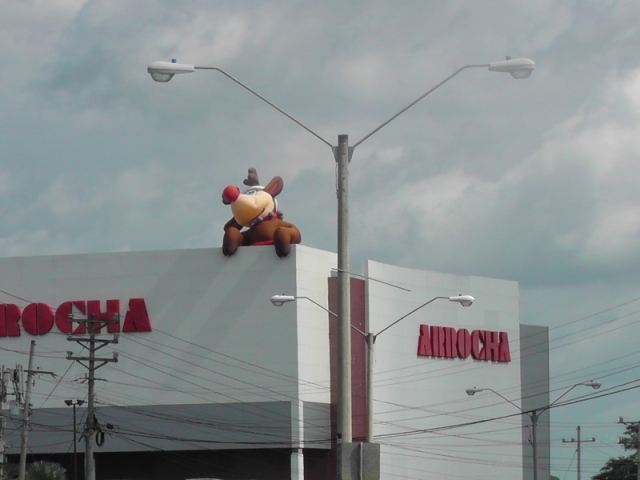 A store  has Rudolf hanging out on the roof!