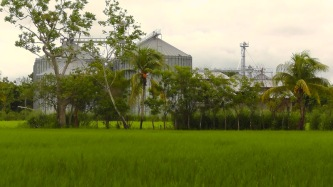 With all the rice growing in the area, I figure this must be a storage facility for rice.