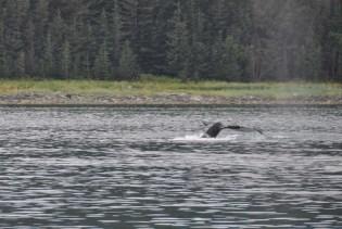 Alaska817B5