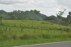 More hills, more green....