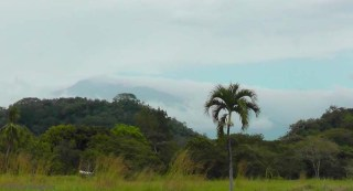 The day before yesterday we could just see the top of Vulcan Baru peeking through the clouds.