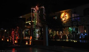There is a cul-de-sac with three large houses that went all out with the lights and decorations!