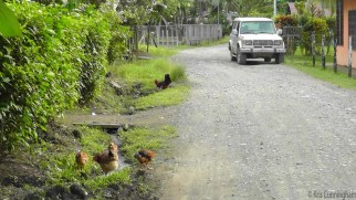 Typical street, unpaved, occasionally with chickens.