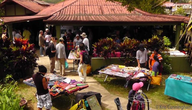 The crowd was starting to thin by the time we left but as you can see, there were still a lot of people enjoying the company and looking at all the interesting things for sale.