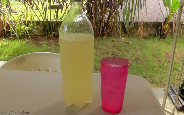 Fresh lemonade, a great drink for a warm afternoon.