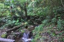 More waterfalls.
