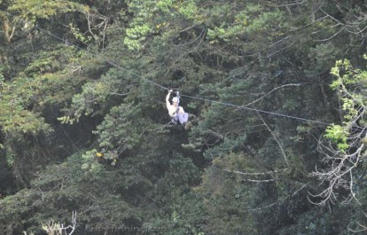 A guy comes in for a landing on the zip line.