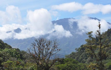 The weather cleared and Volcan Baru looked spectacular.