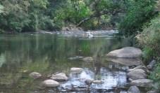 river123013d