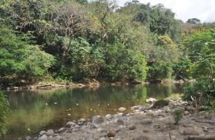 river123013g