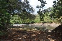 river123013l