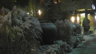 More snow on the landscaping.