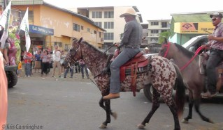 A very interesting and unusual horse.