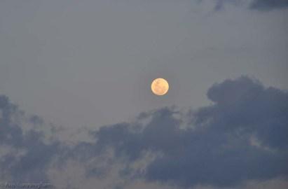 The full moon is amazing.