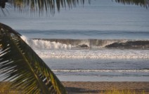 The waves are nice this morning.