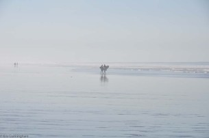 A couple surfers head out in the blue morning light.