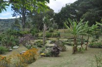 Just some of the extensive gardens.