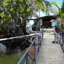 Cedo watches the fish swimming around the dock.
