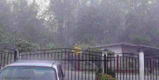 """Yesterday, again, we had another downpour! I was home though and only had to worry about keeping things dry in my """"outside office"""" because again, the wind kicked up quite a bit."""