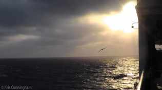 We woke up to a beautiful sunrise, and the frigate bird told me that we must be getting close to land.