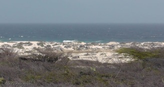 We arrive at the California Lighthouse, and the sand dunes below are pretty.