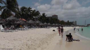 The beach as far as you could see was umbrellas and beach chairs.