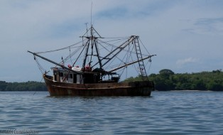 The fishing boats may look funky and rusty, but they are working boats.