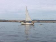 A pretty sailboat