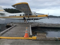 The plane arrives, and the guy pulls on the ropes to coax it to the dock.
