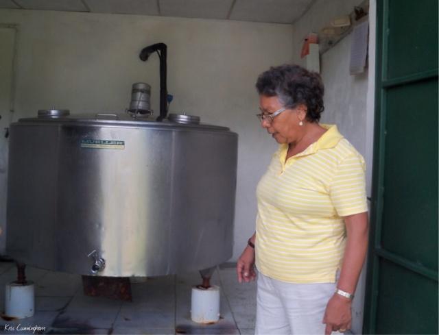 Cedo checks the milk storage tank at her farm.