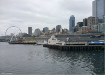 The city recedes in the background as we leave the pier.