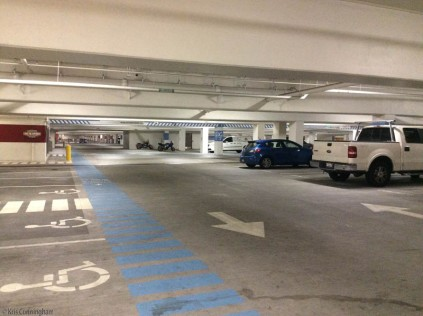 We started in the parking garage at the main campus which looks like it goes on forever, and there are four floors of this!