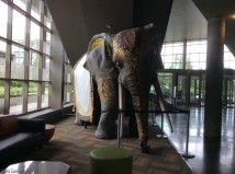 I'm not sure what this cool elephant was doing in this space, but I liked it.