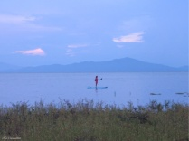 This girl paddle boarding was a beautiful sight in the fading light