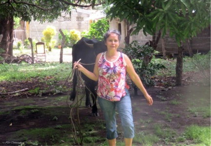 The Nicaraguan neighbor leads her cow Princessa to our yard to graze. This cow provides important milk and calves for her family.