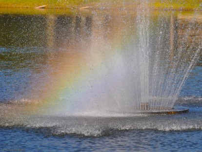 This day I stopped in front of an assisted living facility in Sarasota, happy to see this fountain in the bright sunlight showing a rainbow. A physical therapist from our company stopped to see if I was having car trouble, not sure why I was stopped beside the driveway.